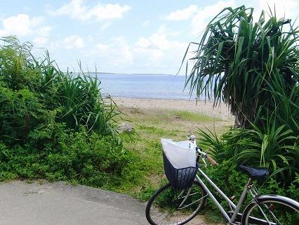 トクジム自然公園ビーチ(久米島)